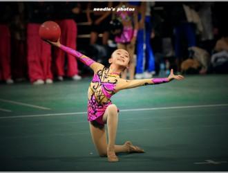 关于举办2017年陕西省健美操、艺术体操、啦啦操及健身操舞教练员、裁判员培训班的通知